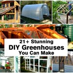 21+ Stunning DIY Greenhouses You Can Make for Your Gardening