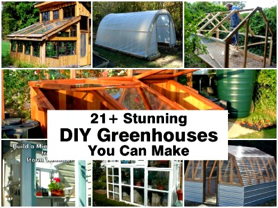 best DIY greenhouses