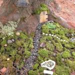 DIY Mini Gardens, small garden ideas