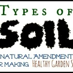 3 Different Types of Soil and Natural Fixes for Soil Problems