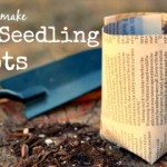 How to Make DIY Paper Seedling Pots