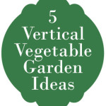 5+ Vertical Vegetable Garden Ideas