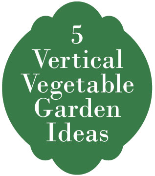 5 vertical garden ideas
