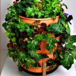 Garden Tower Vertical Container Garden [Video]