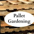 How to Create a Pallet Garden