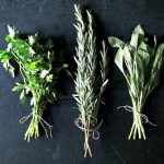 How to Dry Your Garden Herbs