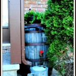 How to Convert a Whiskey Barrel into a Water Barrel