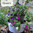 How to Make Stacked Buckets of Flowers for Your Garden