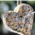 How to Make DIY Birdseed Cakes