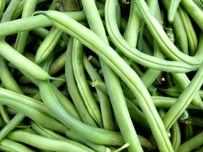 Green Beans in Containers