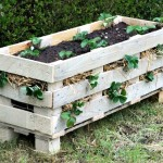 How to Make a Strawberry Pallet Planter (Includes a Video!)