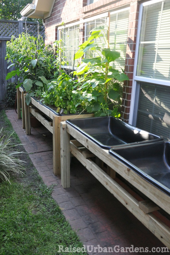 A raised bed garden in a small garden space small garden for Small garden bed ideas