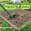 Prepping for Fall Planting and Gardening