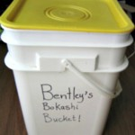 Everything You Need to Know About Bokashi Composting