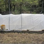 Row Cover System : Dave's Square Foot Garden