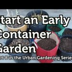 Start a Simple Container Garden Early – YouTube