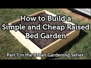 How to Build a Wood Raised Bed Garden for Beginners