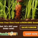 Seeds Nows Discount Ad