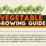 A Vegetable Garden Growing Guide