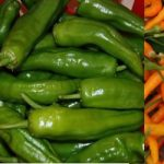 How to Grow Peppers in Containers