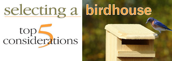 Selecting a Birdhouse