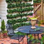 Cheap Backyard Gardening Ideas