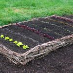 5 Raised Garden Beds You Can Build In Half a Day