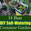 self watering gardens