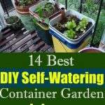 14 Best DIY Self-Watering Container Garden Ideas