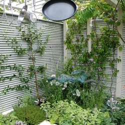 Pocket Garden Ideas