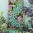 25 Small Backyard Ideas