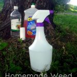17 DIY Magical Potions For Killing Weeds