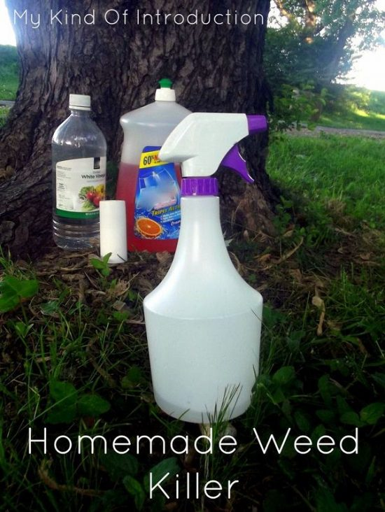 17 Diy Magical Potions For Killing Weeds Small Garden Ideas