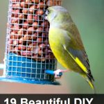 19 Bird Feeders