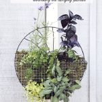 17 Hanging Herb Garden Ideas For Small Spaces!